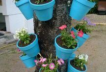Petits secrets de jardin