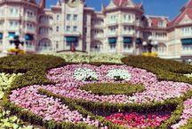 Disneyland / Disneyland Paris