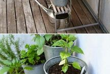Herb planters and  garden beds