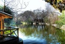Praças de Madrid / As melhores praças e parques de Madrid para ir com crianças!