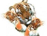 tiger tats