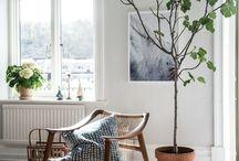 Home decor ideas for the interior designer
