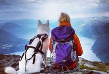 [Outdoor Friends] / Where would you be without mans best friend to help you along the way with your adventures ..