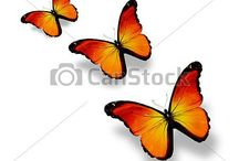 Butterflies / Tat ideas