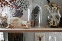 Altars / Places for personal devotion.