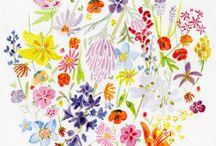 Kukka- ja kasvigalleria