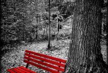 - Pretty IN Red -