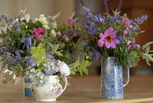 Jan & Steve's Wedding July 2014 / Simple, Pinks, Ivorys and a touch of Blue for Jan and Steve's Wedding