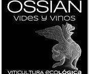 Ossian, Vides y Vinos / Filosofía eco-lógica aplicada a viticultura y elaboración, para crear un vino que expresa todo el potencial y personalidad de un viñedo centenario.