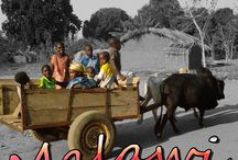 May 2014 Country of the Month: Malawi / Welcome to Malawi, our May Country of the Month! Follow this board to learn about the country, its culture, and language!