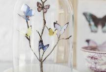 bellas mariposas.