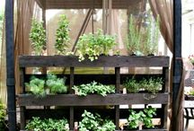 Ideas for herb and vege gardens