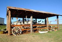 Jenny's Rustic Garden / My Rustic Garden and Wagon Shed, Kalbar Qld Australia