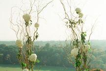 Tashja's Wedding