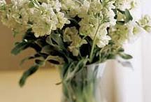 Vintage Neutral Flowers  / by Cynthia@ Beach Coast Style.com