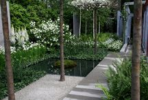 Small Gardens / Courtyards