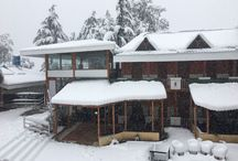 Treehouse Chail