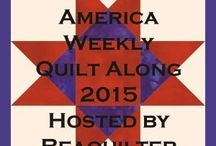 Covering america 50 states weekly Quilt along