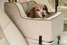 Car seats for dog