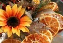 Autumn / Yay! Autumn is so beautiful!