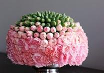Lovely flowers / Lovely Flowers