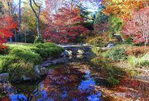 Japanese Garden at Maymont