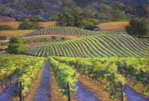Vineyards and Lavender / by Sherry Schmidt