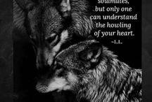 Wolfs q