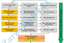 SAP BO on SAP HANA Training / SAP BO on HANA Training provided Online from USA industry expert trainers with real time project experience. Ph: 515-978-1059. Live & Video training.Duration: 55hrs