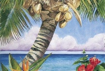 palm trees / by Cindy G