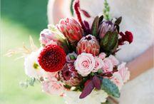 Wedding stuff / by Brigette Whitaker