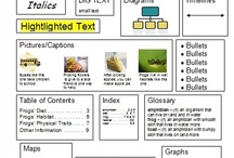 2nd ELA Text & Graphic Features / by Darla Moore