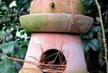 casa de pájaros / birdhouse
