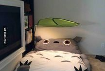 all about totoro