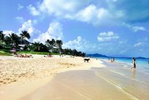Hawaii Paradise Jetset Guide / All the best jetsetter tips for how to make the most of your time in paradise.  / by Jetset Times