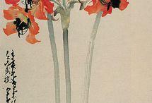 Flowers / by Shusha B