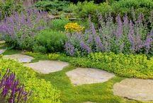 garden Jana