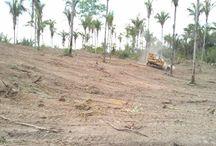 Obras preliminares / Confira como está ficando o acesso ao loteamento vila verde com as obras preliminares.