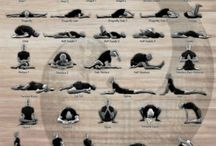 I ♥ (YIN) YOGA / by Daphne Schuuring