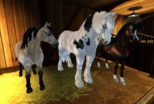New Horse Star Stable