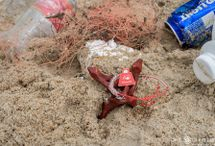 Ocean and Beach Cleanup Efforts
