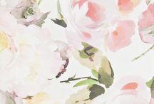 Floral illustrations