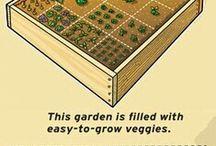 Ideas for the new house/garden