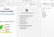 CV Lebenslauf Vorlagen Download