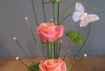 blomrangskik