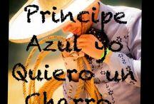 Traditions and culture Mexicans / Historia,cultura,tradiciones,comida,venidas,estilo de vida ...y arte mexicana!!! / by Maria Martinez