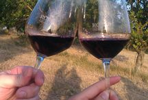 wine passion
