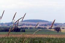 Krajobraz polskiej wsi/ Polish rural landscape