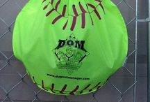 Our new website and shopping cart / Hello Pinteres  Our brand new website and shopping cart is finally up and running. From now on every DOM you purchase will come with a water proof label. We are also giving a free bag for all your single DOM purchase for either softball or baseball.  If you buy off of our website you will get a free shipping deal with your team purchase.  visit www.dugoutmanager.com