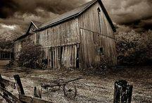 Rustic Abandonment / by Dana Giammaria